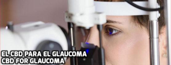 Lee más sobre el artículo El CBD para el Glaucoma
