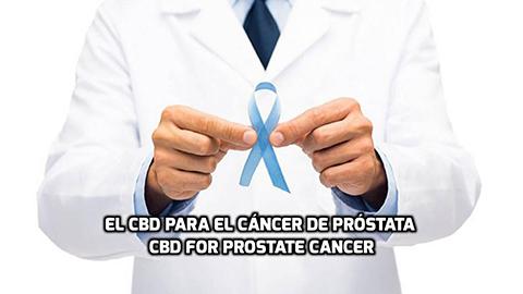 Lee más sobre el artículo El CBD para el Cáncer de Próstata