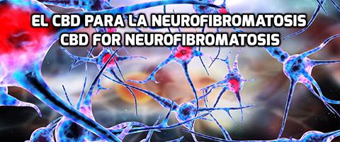 Lee más sobre el artículo El CBD para la Neurofibromatosis