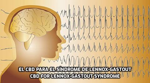 Lee más sobre el artículo El CBD para el Síndrome de Lennox-Gastaut
