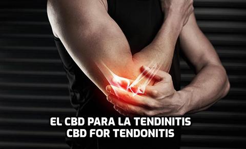El CBD para la Tendinitis