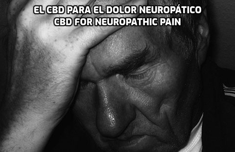 Lee más sobre el artículo El CBD para el Dolor Neuropático
