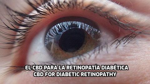 Lee más sobre el artículo El CBD para la Retinopatía Diabética