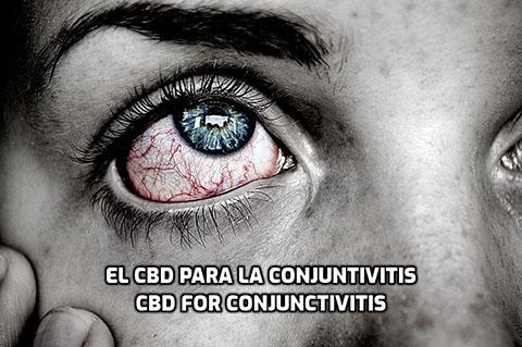 En este momento estás viendo El CBD para la Conjuntivitis