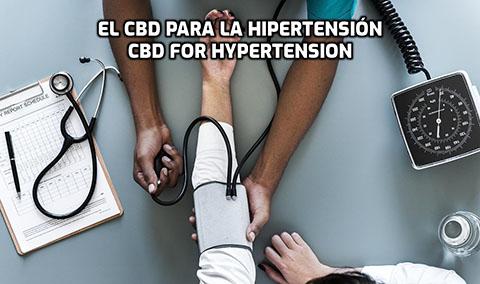 Lee más sobre el artículo El CBD para la Hipertensión