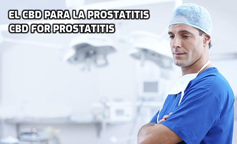 El CBD para la Prostatitis