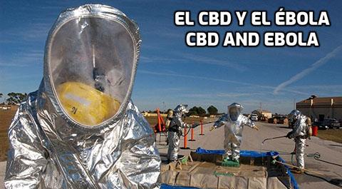 EL CBD y el Ébola